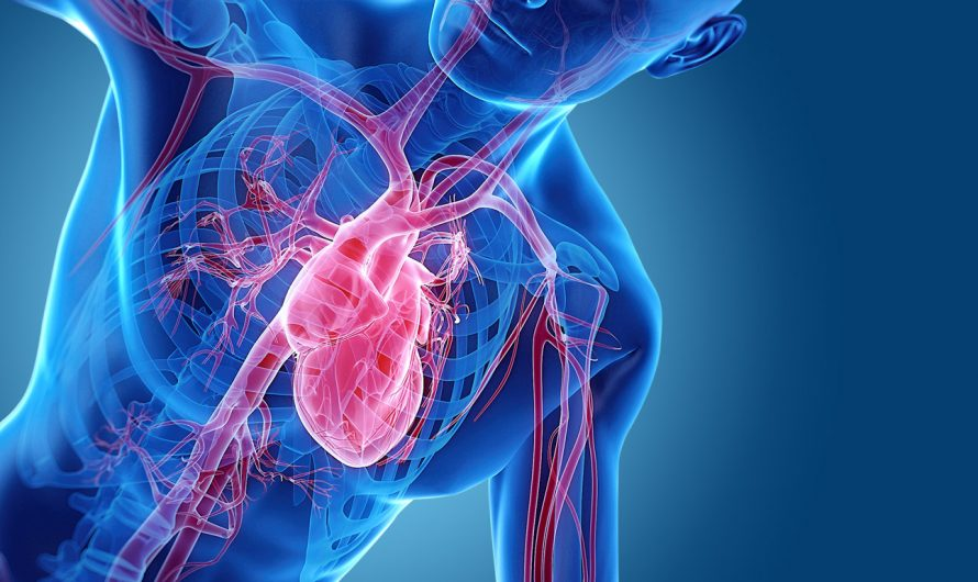 Травматическая остановка сердца — можем ли мы найти прогностические факторы, предсказывающие выживаемость?